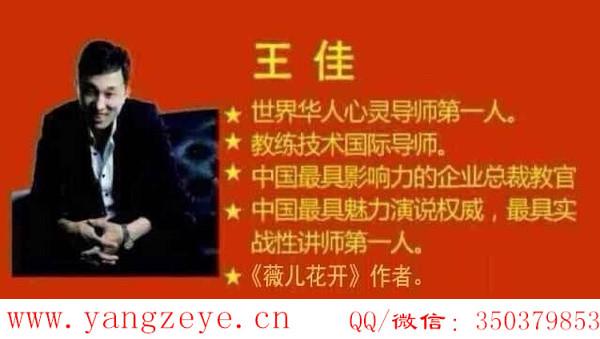 《王佳老师超级微营销、微信营销心法》语音课程全集