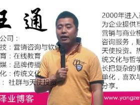王通分享:我的域名投资经验