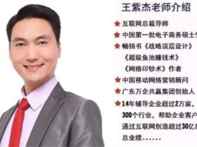 经典回顾:王紫杰互联网急速盈利系统