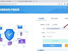 杨泽业创业日记第8篇:网上税务申报(企业相关税收申报)