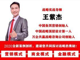王紫杰战略营销课程:眼镜店和定制家具公司如何运用店中店的商业模式盈利