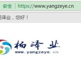 杨泽业博客全站开启https安全浏览